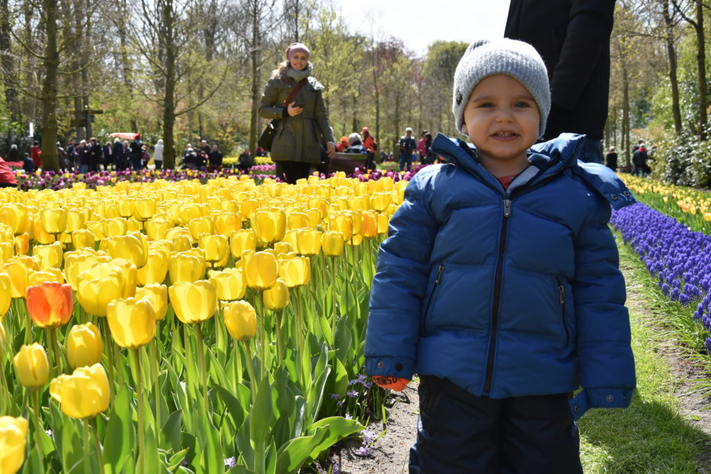 AMS 4476 cópia 1024x683 - Primavera na Holanda - Especial Keukenhof